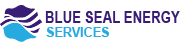 Blue seal Energy services